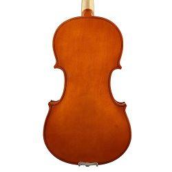 Leonardo violina 3/4