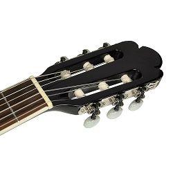 Richwood elektro-klasična gitara RC-16-CEBK