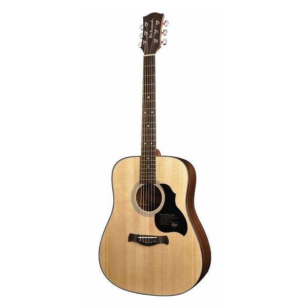 Richwood akustična gitara D-40