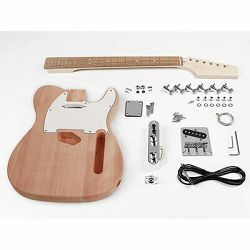 Boston guitar assembly kit  TE-15