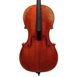 Scott Cao Pro cello 4/4